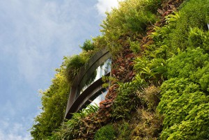 vertical-planting-of-greenery-61